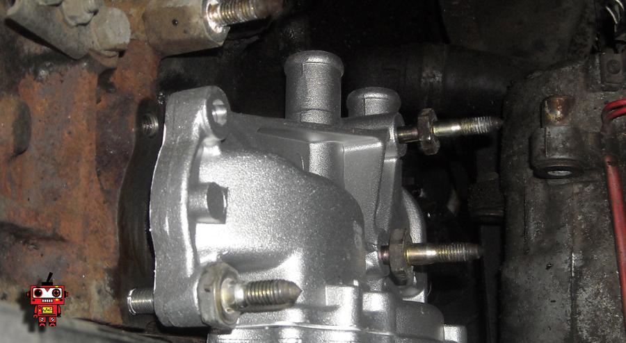 DSCN2964